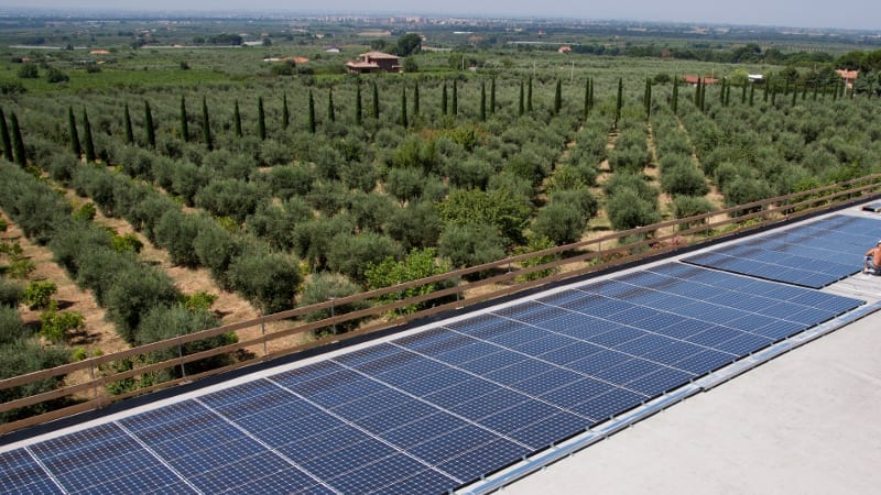 Realisierung von Photovoltaikanlagen auf dem Land