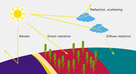 Solar radiation on ground