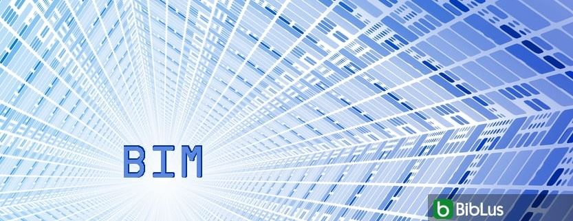 information workflow in BIM