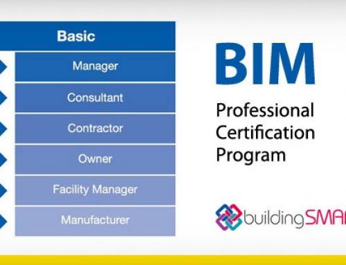 Professional Certification Program, BIM skills and training at an international level