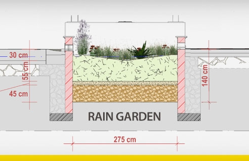 rain garden design and stormwater management