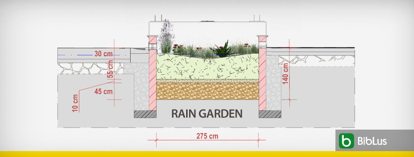 rain garden design and stormwater management