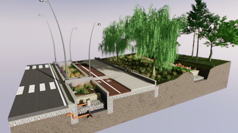 Rain garden design overview