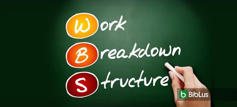 WBS (WorkBreakdownStructure), qué es y cómo se usa