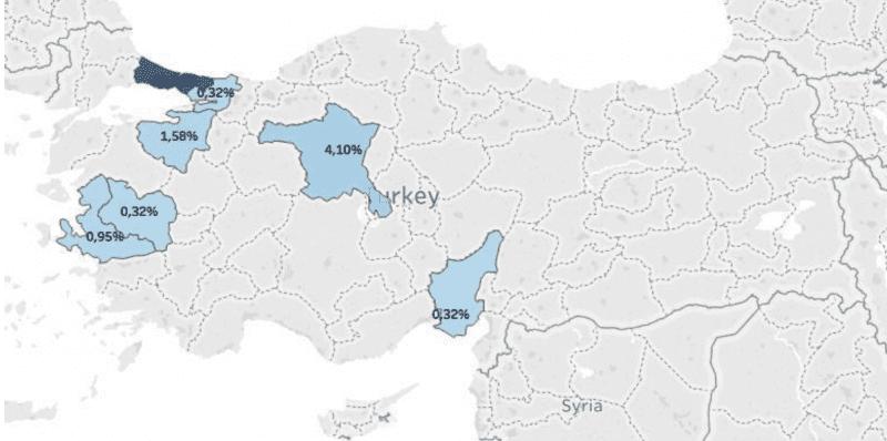 Distribución geográfica del BIM entre las varias provincias turcas.