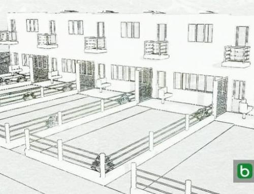 Maisons mitoyennes : projets et exemples avec des plans, des planimétries et des dessins même en format dwg