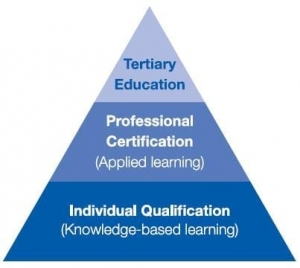 Structure Professional Certification Program