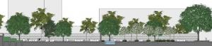 une vue en coupe de la place avec ses arbres et la coupe de la fontaine et ses bancs
