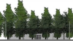 l'image montre une vue en coupe avec ses buts et son filets de protections et en arrière plan des arbres du terrain de fusal - réaliser avec Edificius le logiciel de conception architecturale 3D
