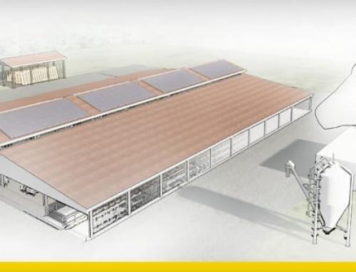 La conception d'un bâtiment d'élevage et d'une installation photovoltaïque avec une modélisation architecturale