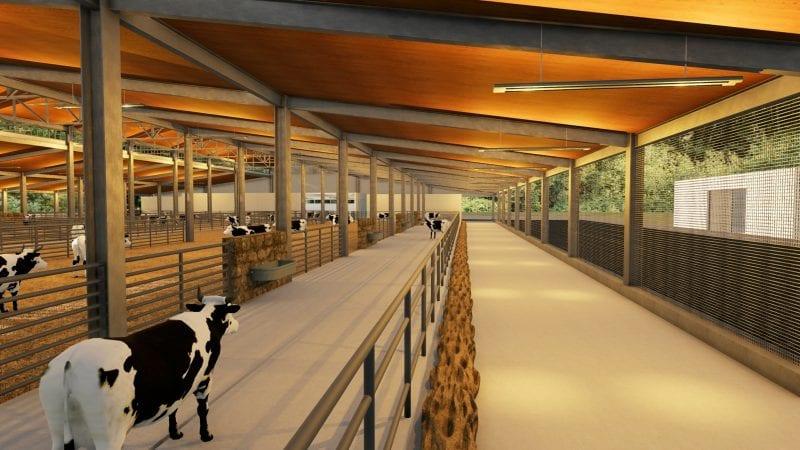 Rendu de la zone d'abreuvement d'un bâtiment d'élevage, rendu produit par Edificius le logiciel de conception architecturale 3D BIM