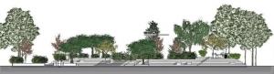 L'image représente une vue en élévation de l'aménagement d'un espace vert, issue de Edificius logiciel de conception architecturale 3D BIM.