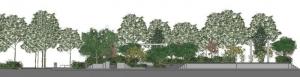 L'image représente une vue en coupe de l'aménagement d'un espace vert, issue de Edificius logiciel de conception architecturale 3D BIM.