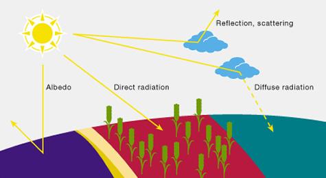 Radiação solar em terra