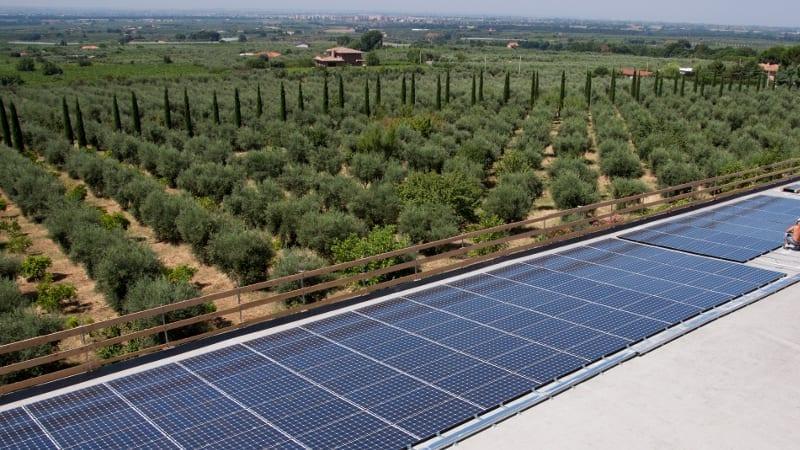 Criação usina fotovoltaica no campo