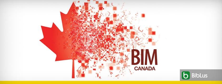 A imagem mostra uma folha de acer junto com a escrita BIM CANADA